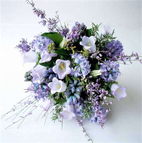 fiori regalare ad una ragazza fiore regalare per la nascita consigli per la scelta