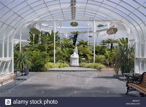 Glasgow Botanical Gardens Interior View Of Glasgow Botanic Gardens Stock Photo Royalty Free Image 24141755 Alamy