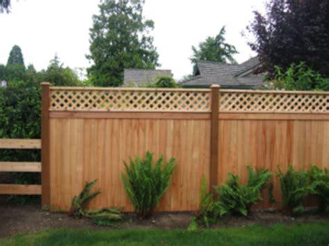 Cheap Garden Fence Trellis Top Cheap Diy Privacy Fence Ideas 13 Wartaku Net