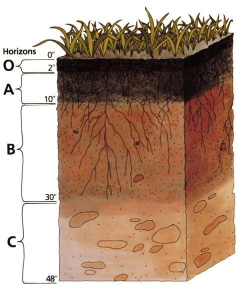 soil horizons diagram pacess 3 4 the soil system