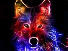 colorful wolf cool colorful wolf computer background