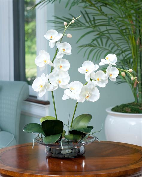 Grand Phalaenopsis Orchid Artificial Flower Arrangement Enhance Your Room Decor With Phalaenopsis Silk Orchid