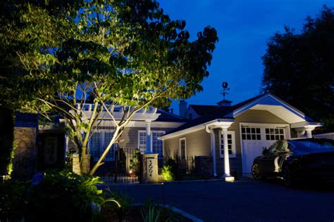 lighting outdoor trees outdoor accent tree lighting for your home inaray design