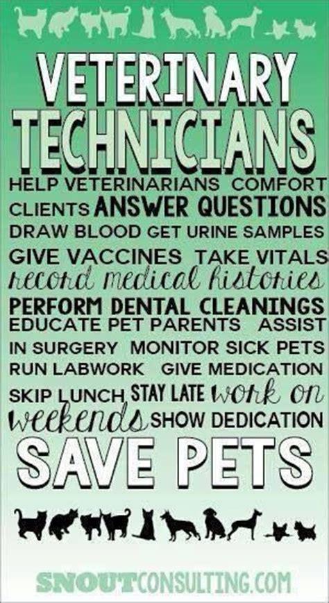 veterinary tech inspirational quotes quotesgram