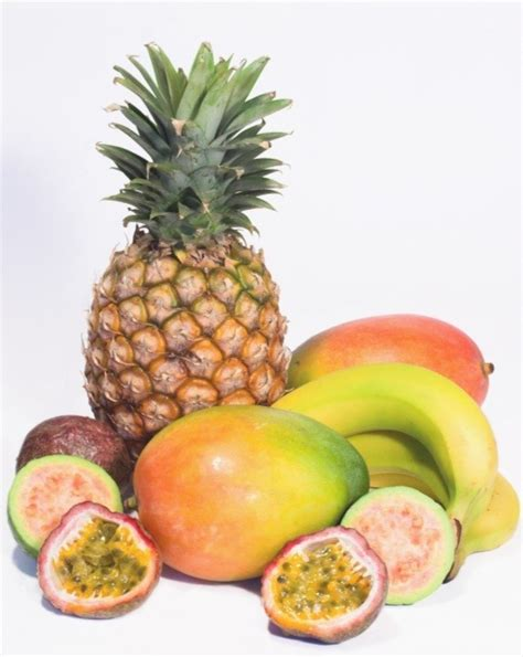 carbohydrates i fruit carbohydrates calories in a gram of carbohydrate