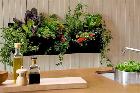 grow  indoor garden cache valley family magazine