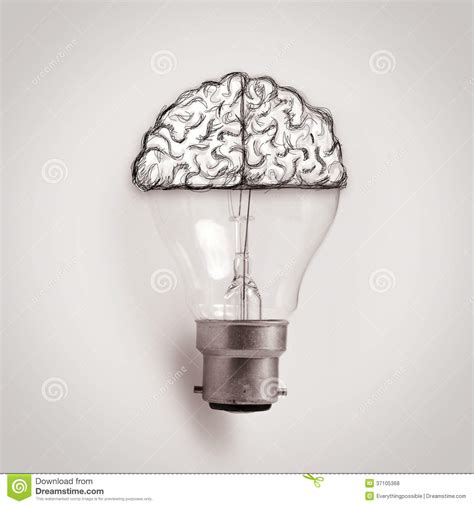 light bulb with hand drawn brain as creative idea royalty