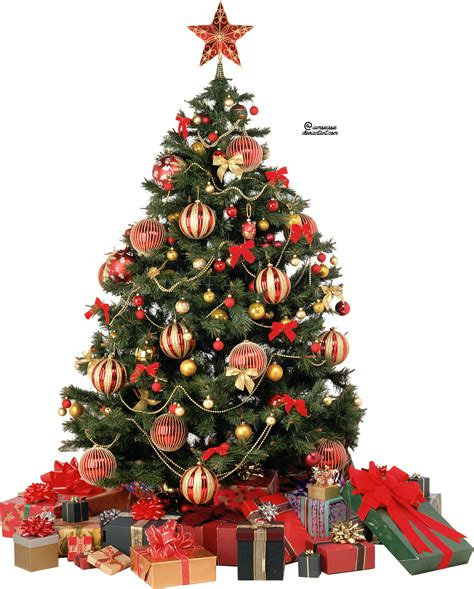 xmas tree png 6 by iamszissz on deviantart