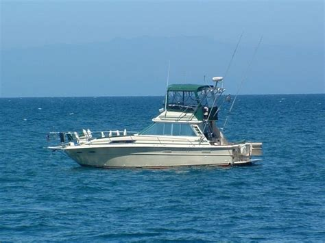 sea ray boats with flybridge used sea ray flybridge boats for sale boats