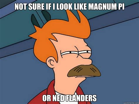 Ned Flanders Memes - not sure if i look like magnum pi or ned flanders