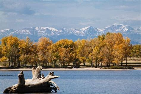 cherry creek park movers centennial co affordable moving and storage