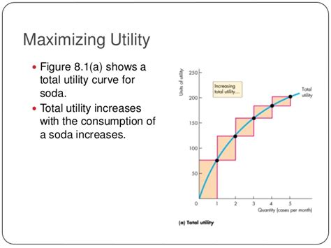 is utility maximized use the consumer behavior utility maximization micro economics