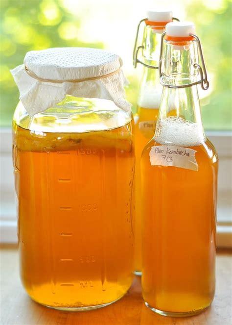 Teh Kombucha minuman fermentasi kombucha jenis bakteri dan ragi yang