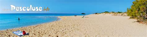 vacanze pescoluse la tua vacanza in spiaggia a pescoluse pescoluse nel