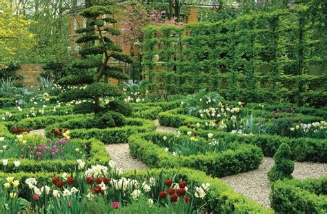 love     espaliered hornbeam  clipped yew