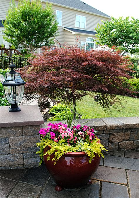 Landscaping Garden Ideas Pictures 8 Great Ideas For Backyard Landscaping The Graphics