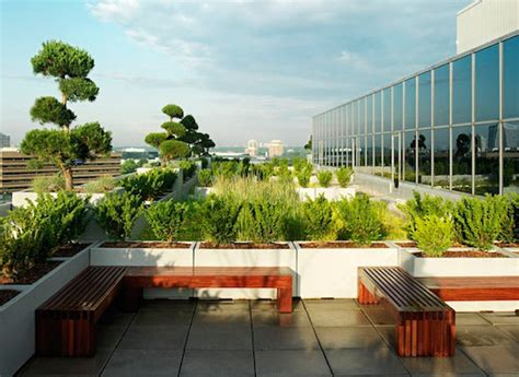 green roof design by spanish based firm on a architects green roofs are changing the way architects design