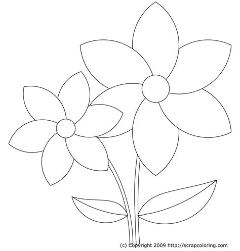 coloring pictures of large flowers pictures of flowers to color pictures of flowers to color