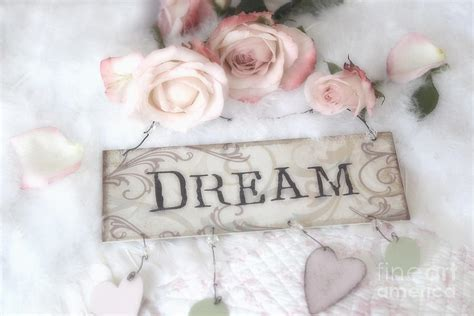 shabby chic cottage pink roses with dream words shabby chic dreamy romantic photos photograph