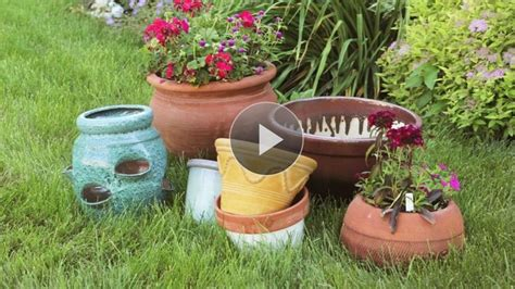 better homes and gardens container gardening 17 best images about garden on gardens raised