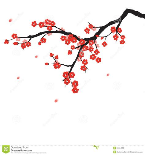 new year blossom tree vector cherry blossom clipart plum flower pencil and in color