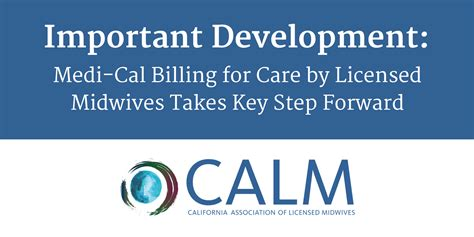 medi cal managed care an overview and key issues issue brief important development medi cal billing for care by