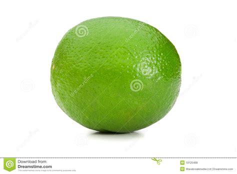 imagenes de limones verdes lim 243 n verde