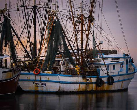 shrimp boat captain photograph by brent paape - Shrimp Boat Captain