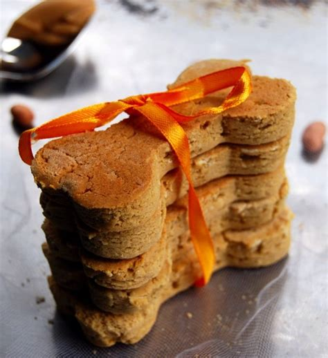 peanut butter cookies for dogs peanut butter biscuits holy cow