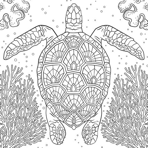 national geographic coloring pages pdf 75 national geographic coloring book animals how i