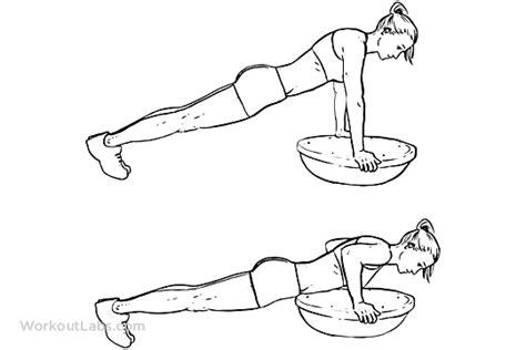 push up diagram bosu push ups pushups workoutlabs