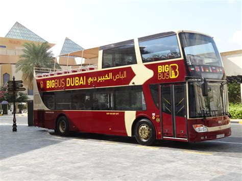 travel bid big tour dubai uae
