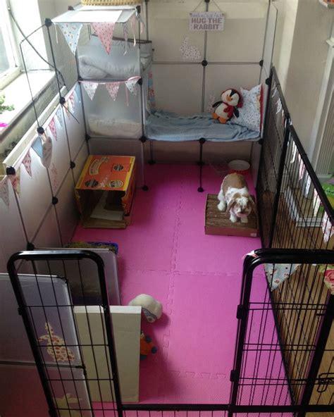 de 25 bedste id 233 er inden for indoor rabbit cage p 229
