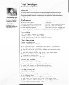 professional cv resume cv template exles