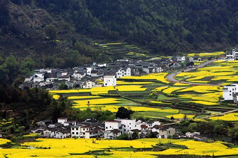 Homes In The Mountains wuyuan county in spring absolute china tours blog