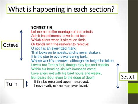 six line sonnet section shakespeare s sonnet 116 structure