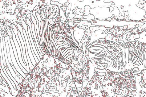 malen nach zahlen vorlage zebra tiere malen nach