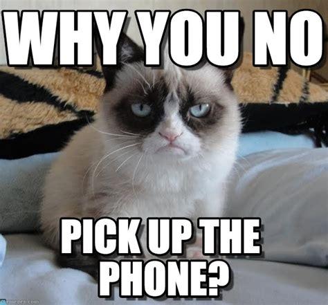 Create A Grumpy Cat Meme - why you no grumpy cat meme on memegen