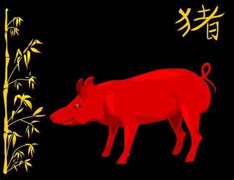 new year pig meaning luck symbols and their meanings to make your kismet shine