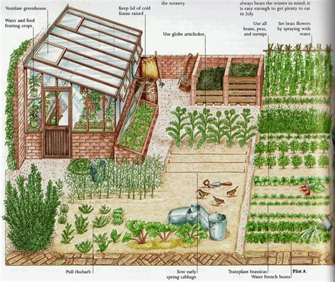 1 acre homestead layout garden ideas gardens garden planning and vegetables 1000 images about homestead ideas on vegetables tins and homesteads