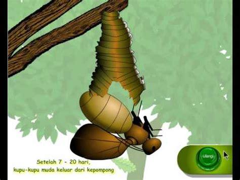Larva Best Tv Shows Jagalah Bumi Oleh Tuban Co Ltd kisah ulat yang malas funnydog tv