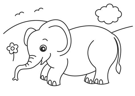 baby elephant coloring pages animal