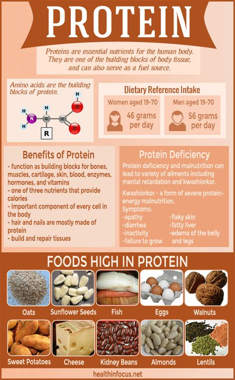 protein s deficiency 7 signs of protein deficiency plus 10 naturally protein
