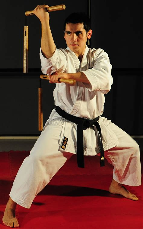 a brief history of the martial arts east asian fighting styles from kung fu to ninjutsu brief histories books nunchaku history technique and use in martial arts
