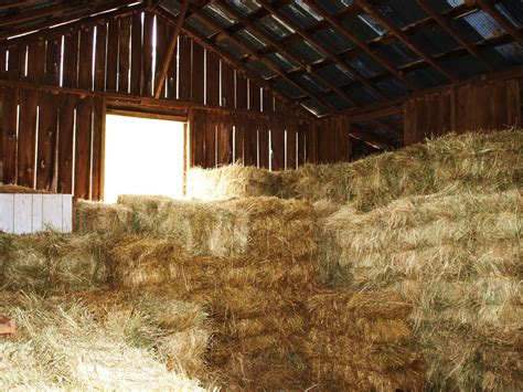 Hay Barn Bolte Farm Spencer Wv