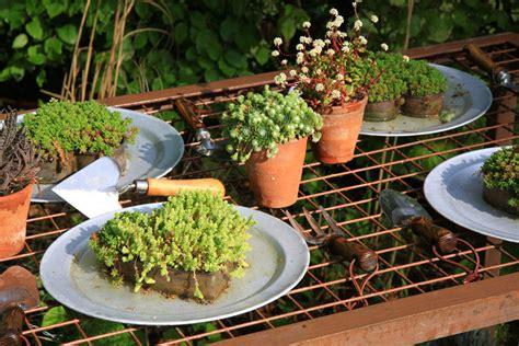 il giardino tatto hortitherapie sensorielle sotto la vernice