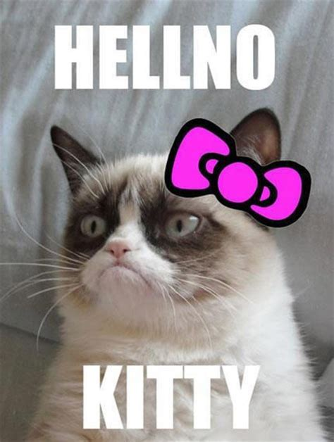 Grumpy Kitty Meme - no grumpy cat quotes quotesgram