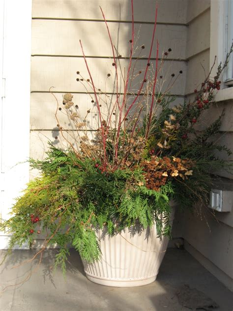 Pinterest Garden Container Ideas Winter Container Garden Ideas Pinterest