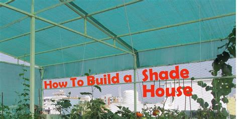 design and build a house building a shade house plans house and home design