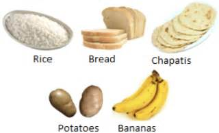 6 sources of carbohydrates chapter 2 components of food page 2 learnex